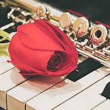Hochzeitsmusik Wien